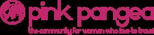 Pink Pangea Interview